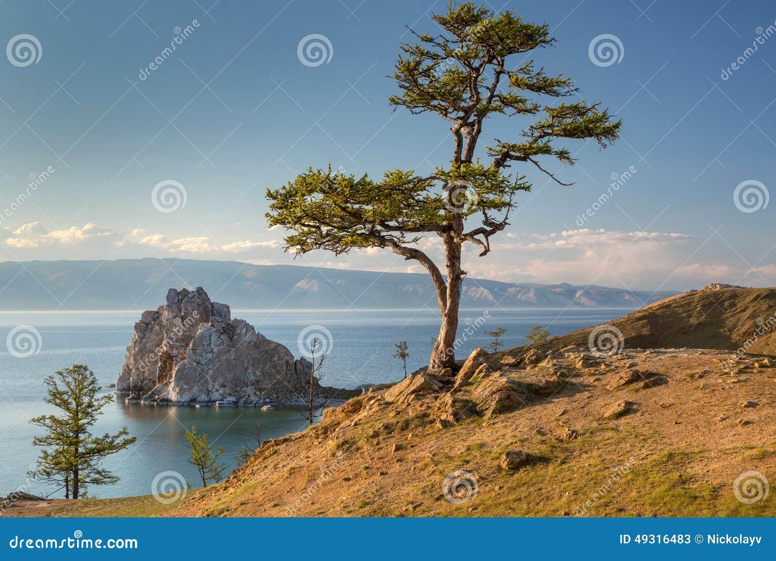 Mening van kust van het meer van Baikal