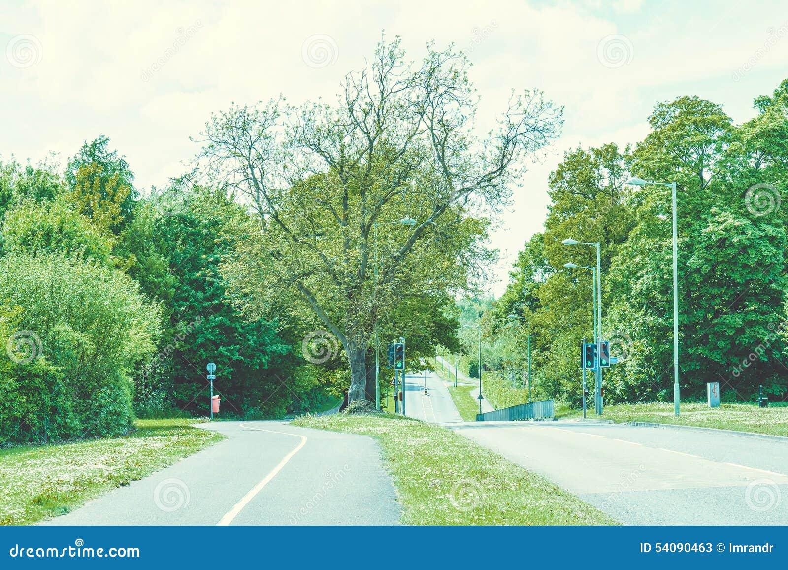 Mening van lege Britse weg in landelijk Suffolk