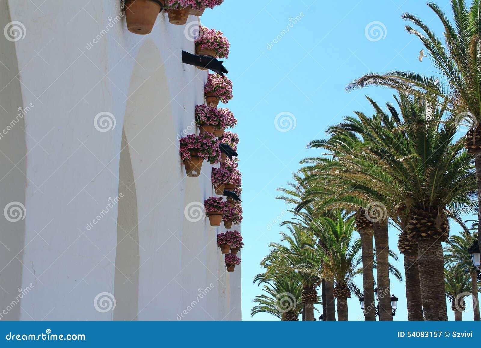 Mening van Nerja met palmen en bloemen