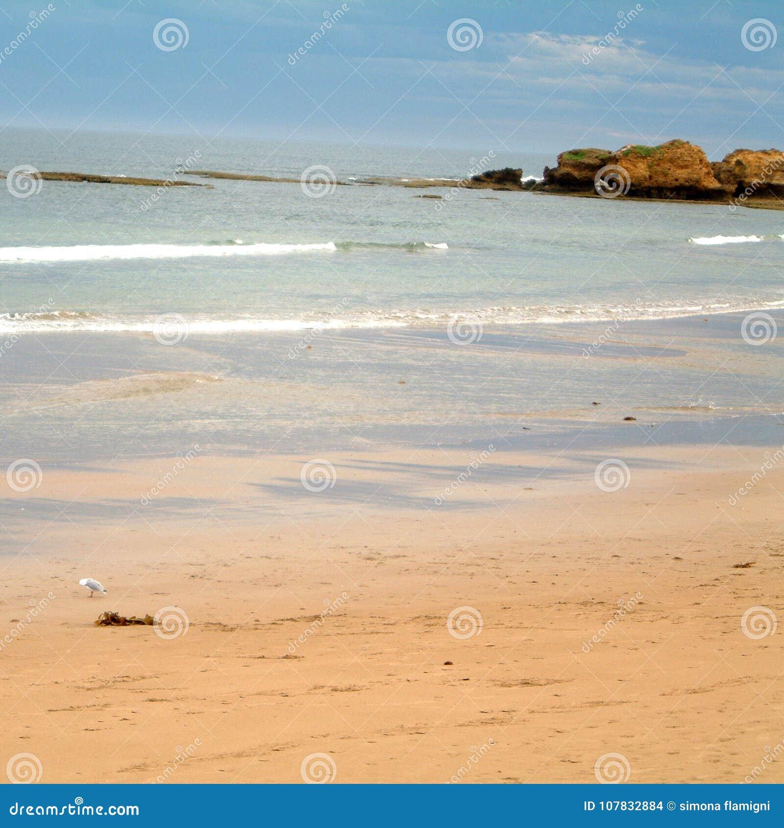 Mening van Torquay-strand