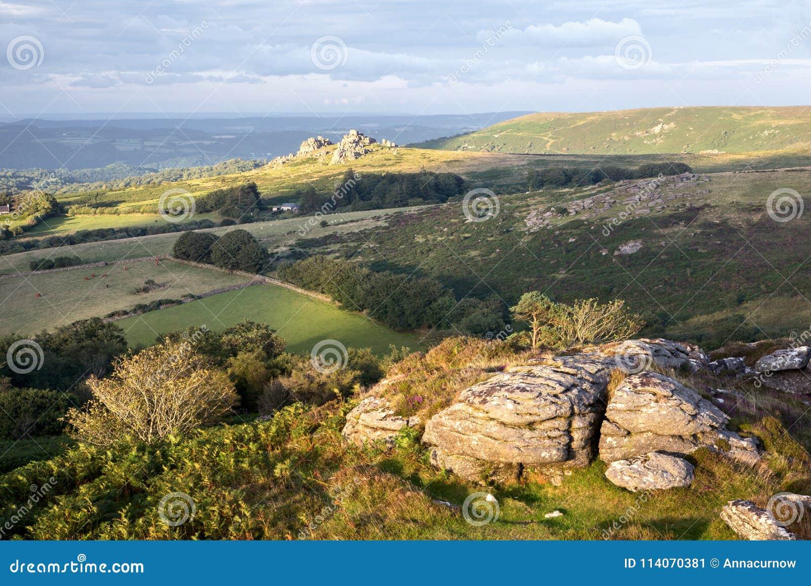 Meningen van Honeybag-piek Dartmoor Devon het UK
