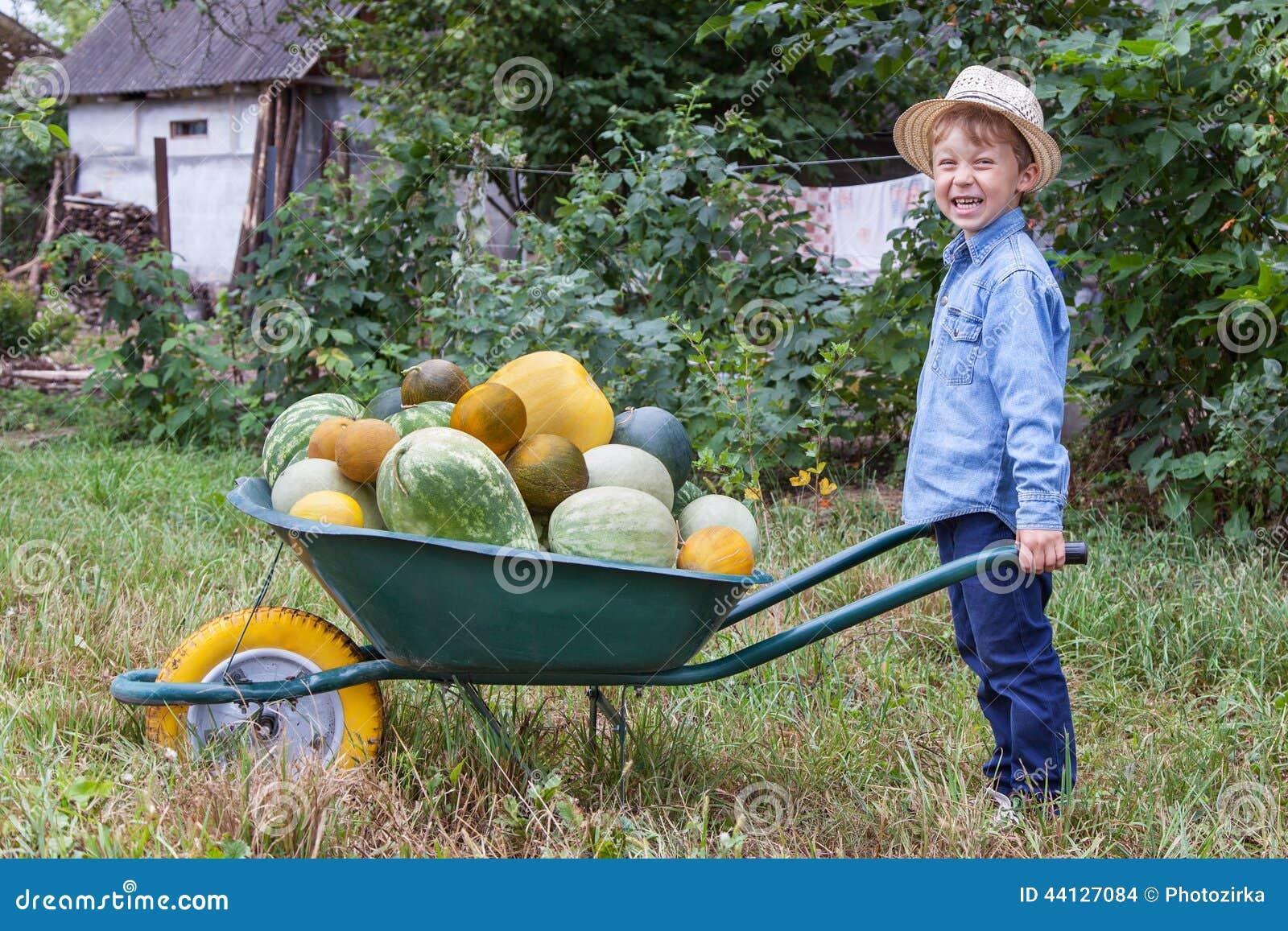 Menino com o carrinho de mão no jardim