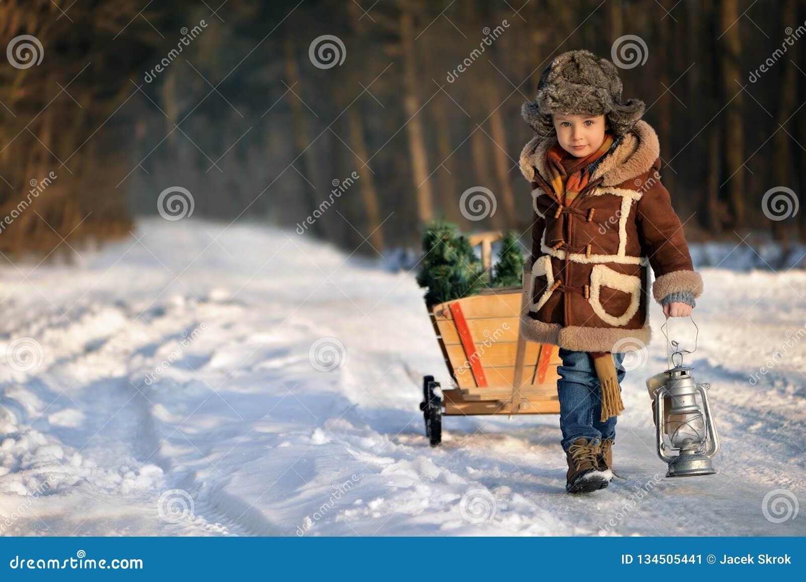 Menino com uma árvore de Natal na floresta do inverno