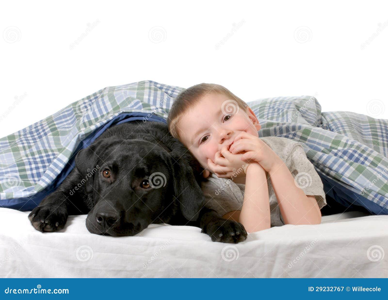 Download Menino e cão imagem de stock. Imagem de feliz, canine - 29232767