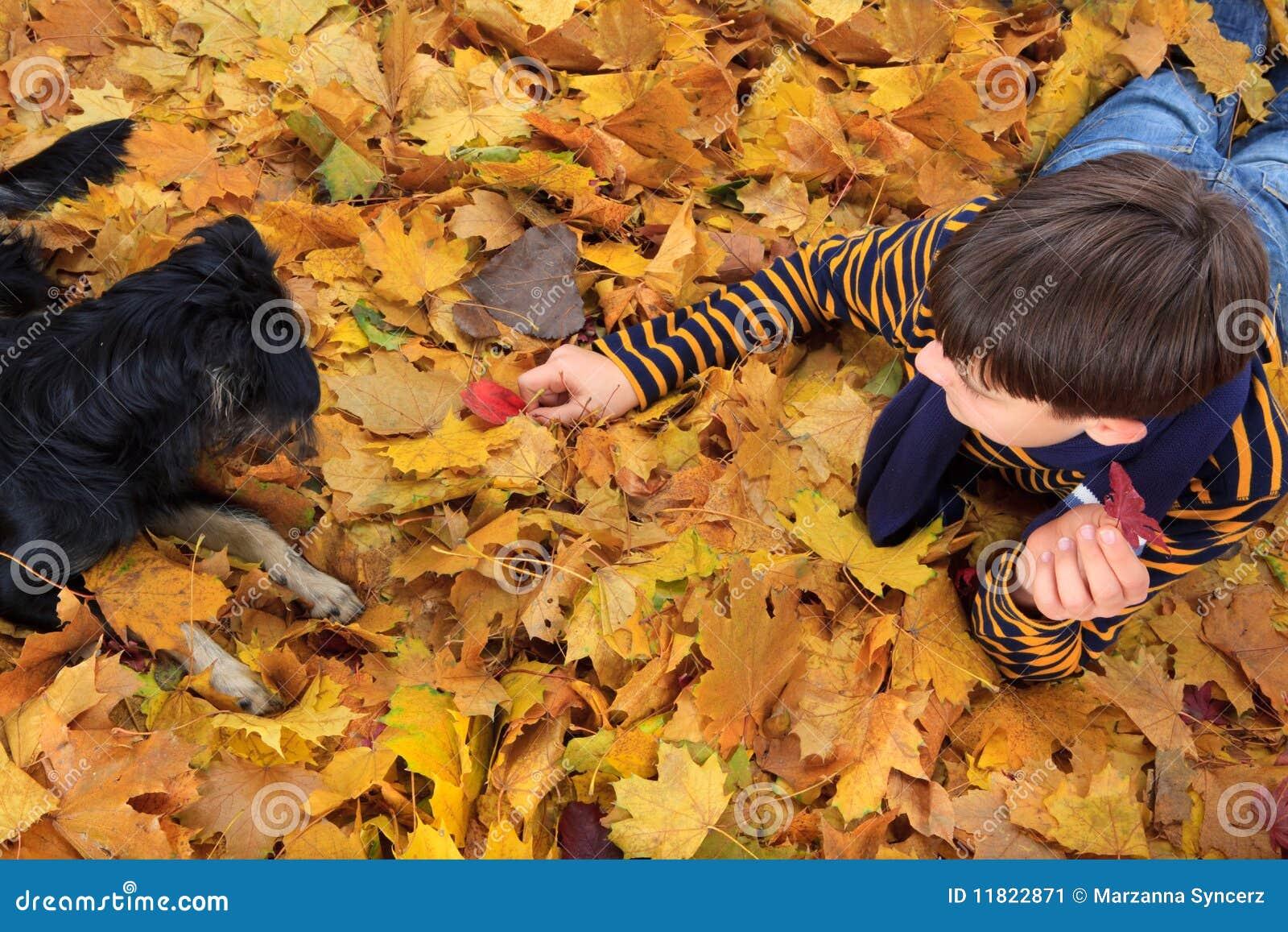 Menino e cão que jogam no outono