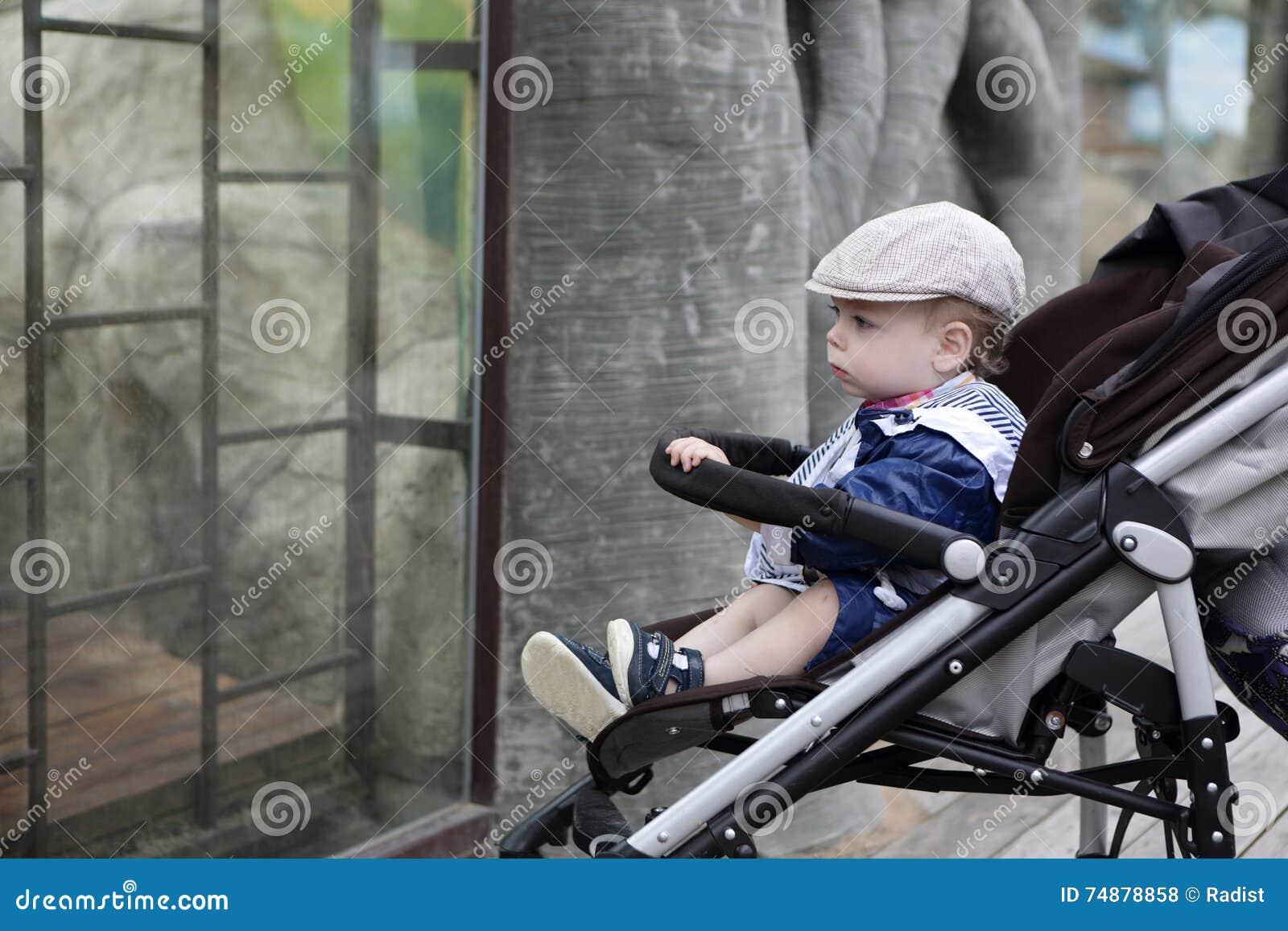 Menino no jardim zoológico
