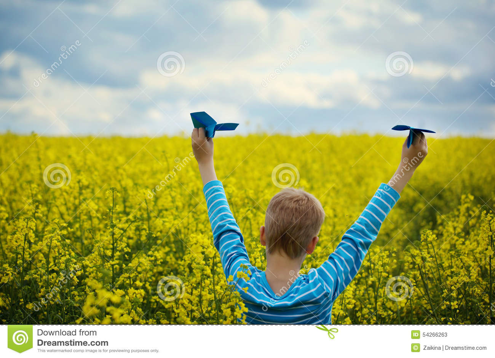 Menino novo com plano de papel contra o céu azul e o campo amarelo Flo