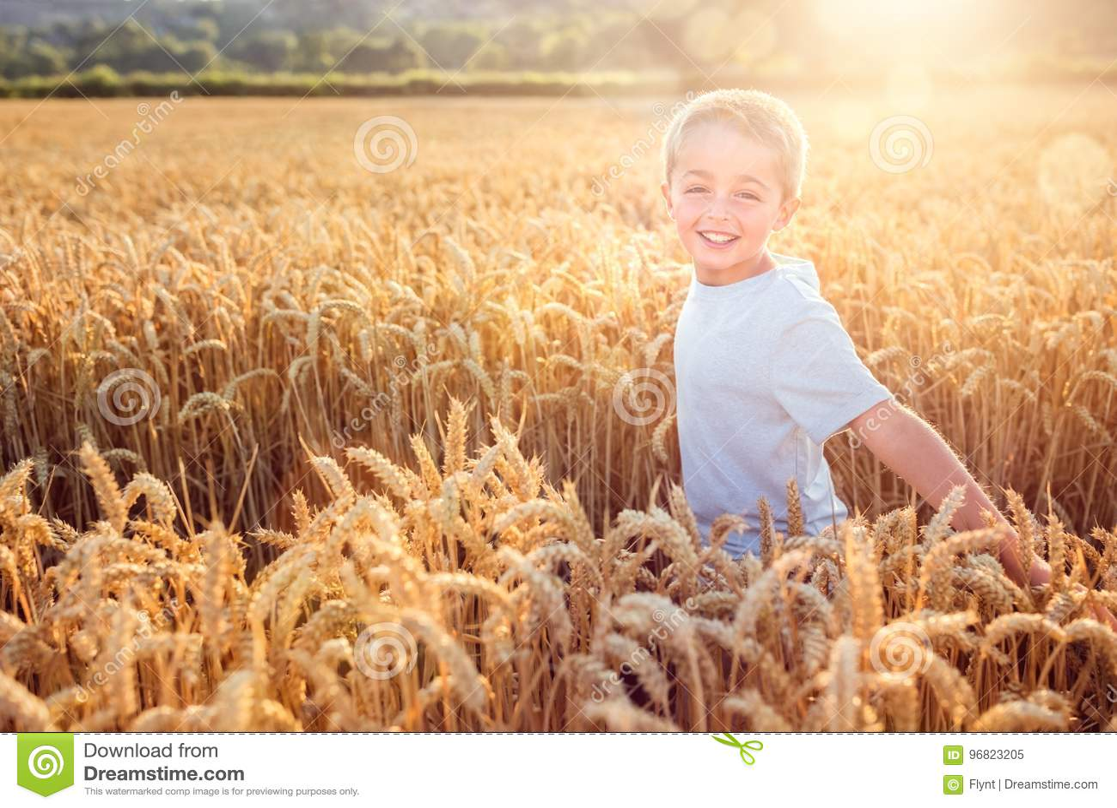 Menino que corre e que sorri no campo de trigo no por do sol do verão