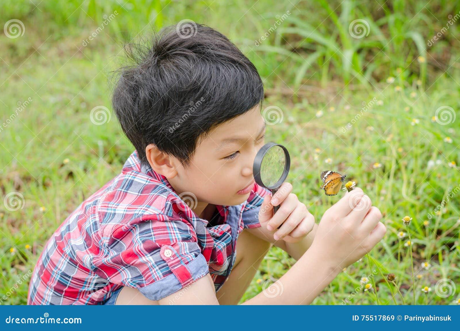 Menino que usa a lupa a observar a borboleta