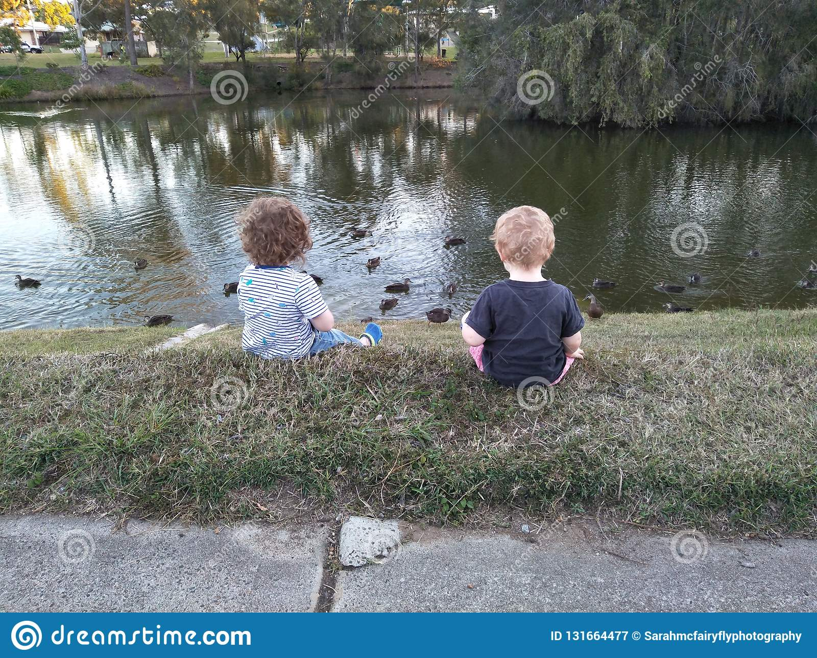 Meninos que alimentam patos