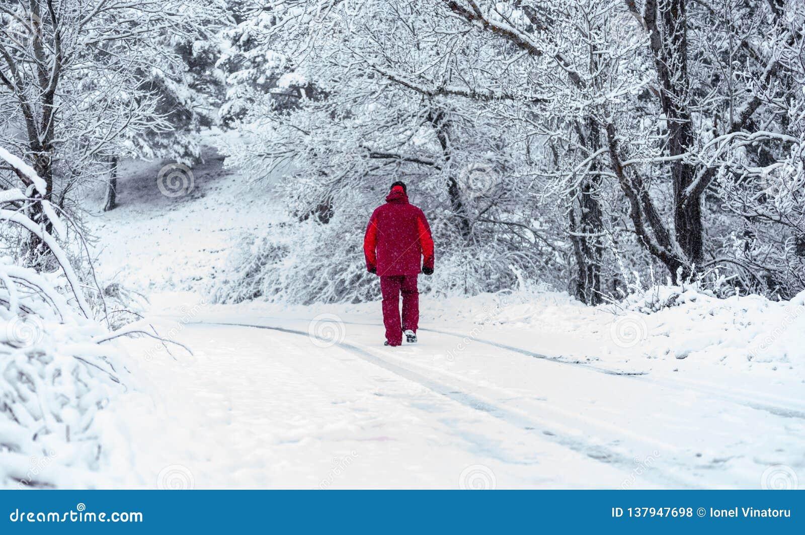 Mens die door het sneeuwbos lopen