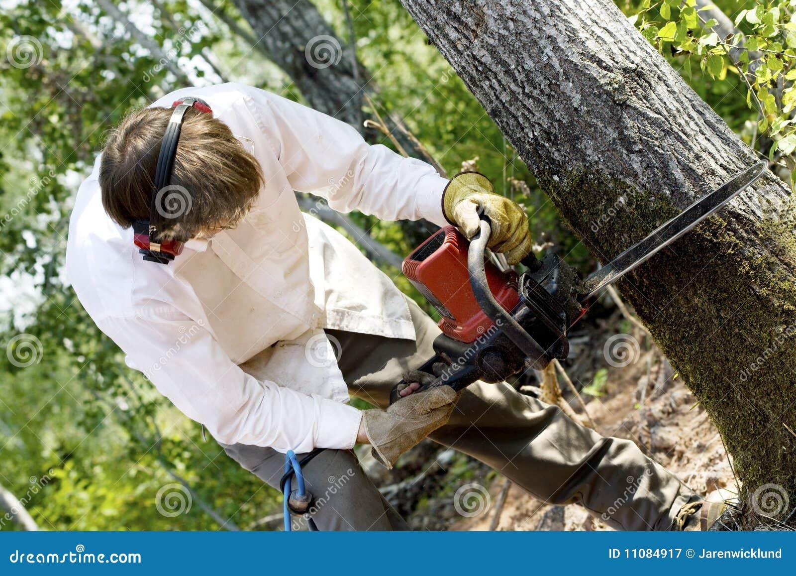 Mens die een boom vermindert