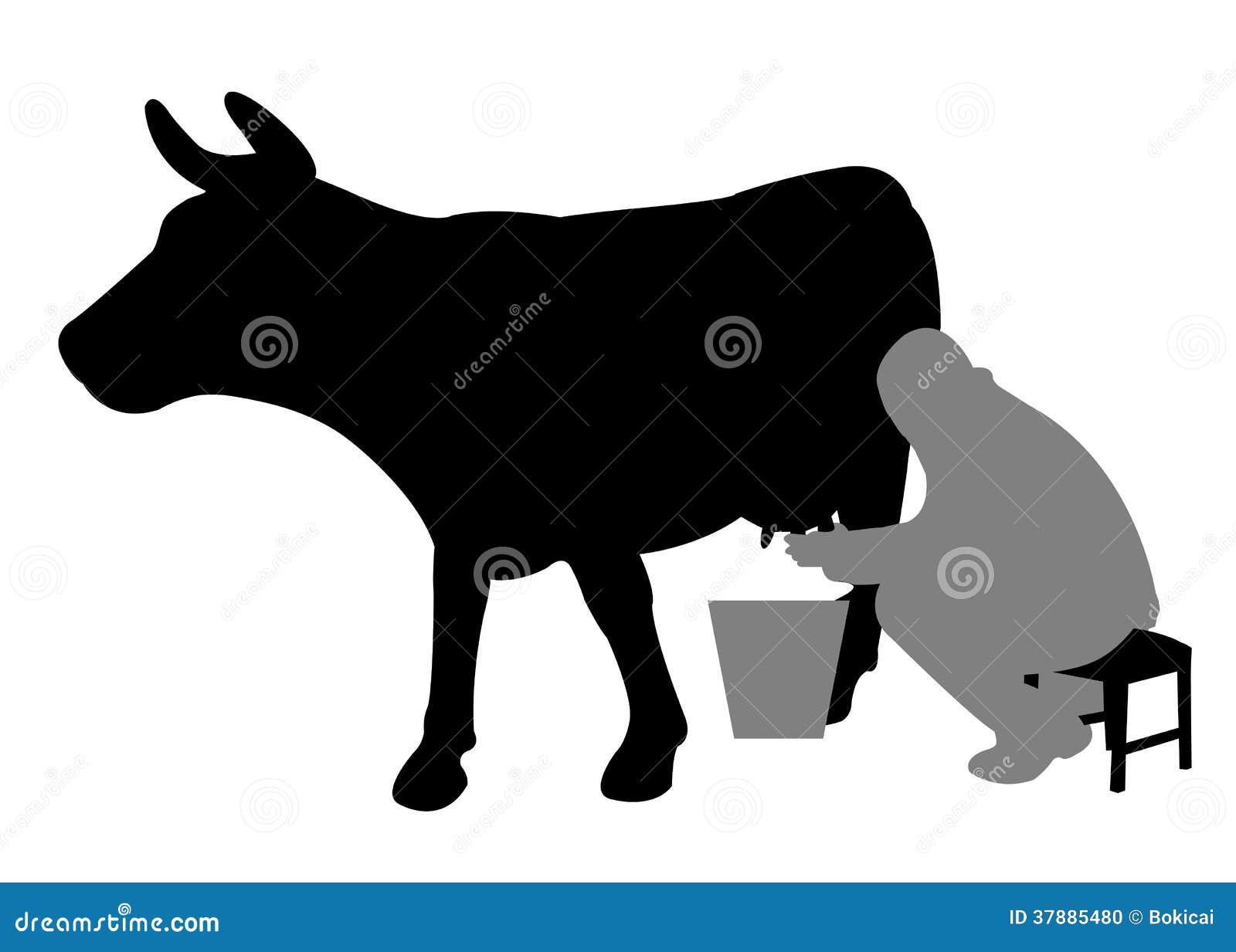Mens die een koe melken