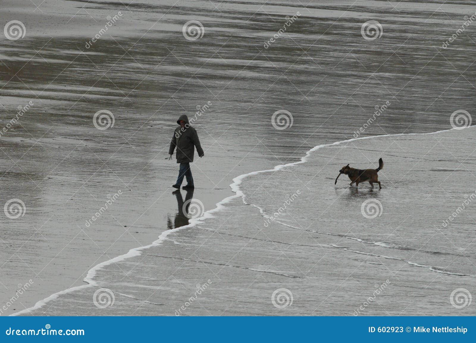 Mens en hond met stok op strand