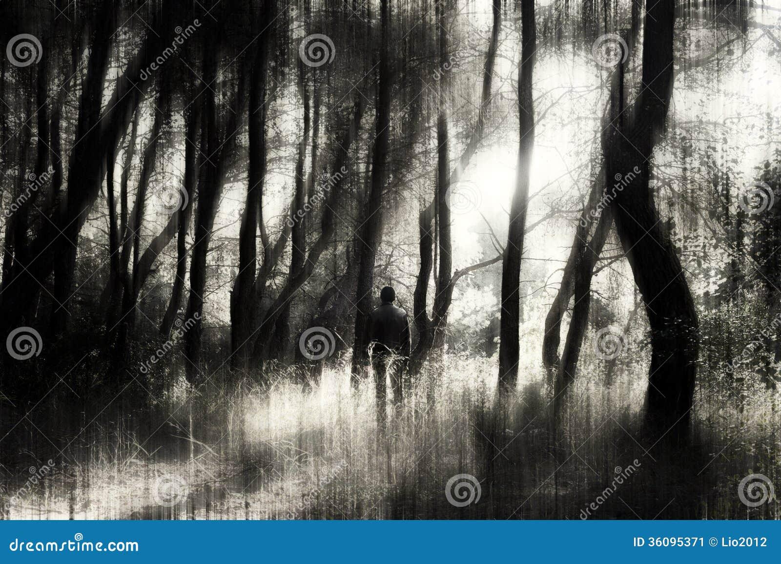Mens in het bos