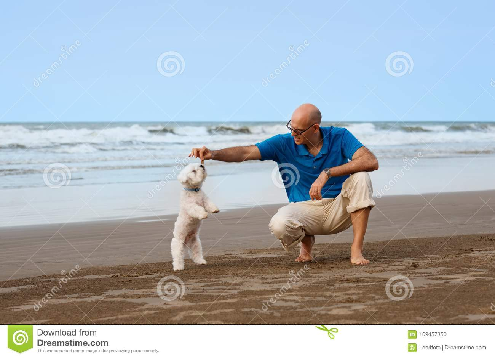 Mens het spelen met hond bij het strand