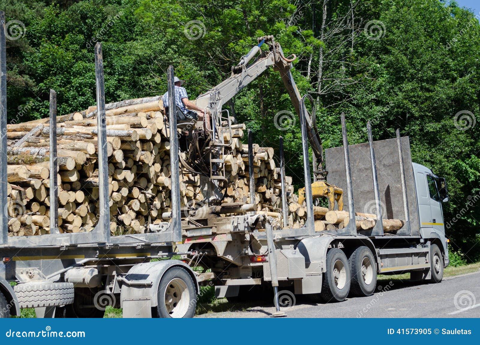 Mens met de speciale vrachtwagen van de materiaallading met logboeken
