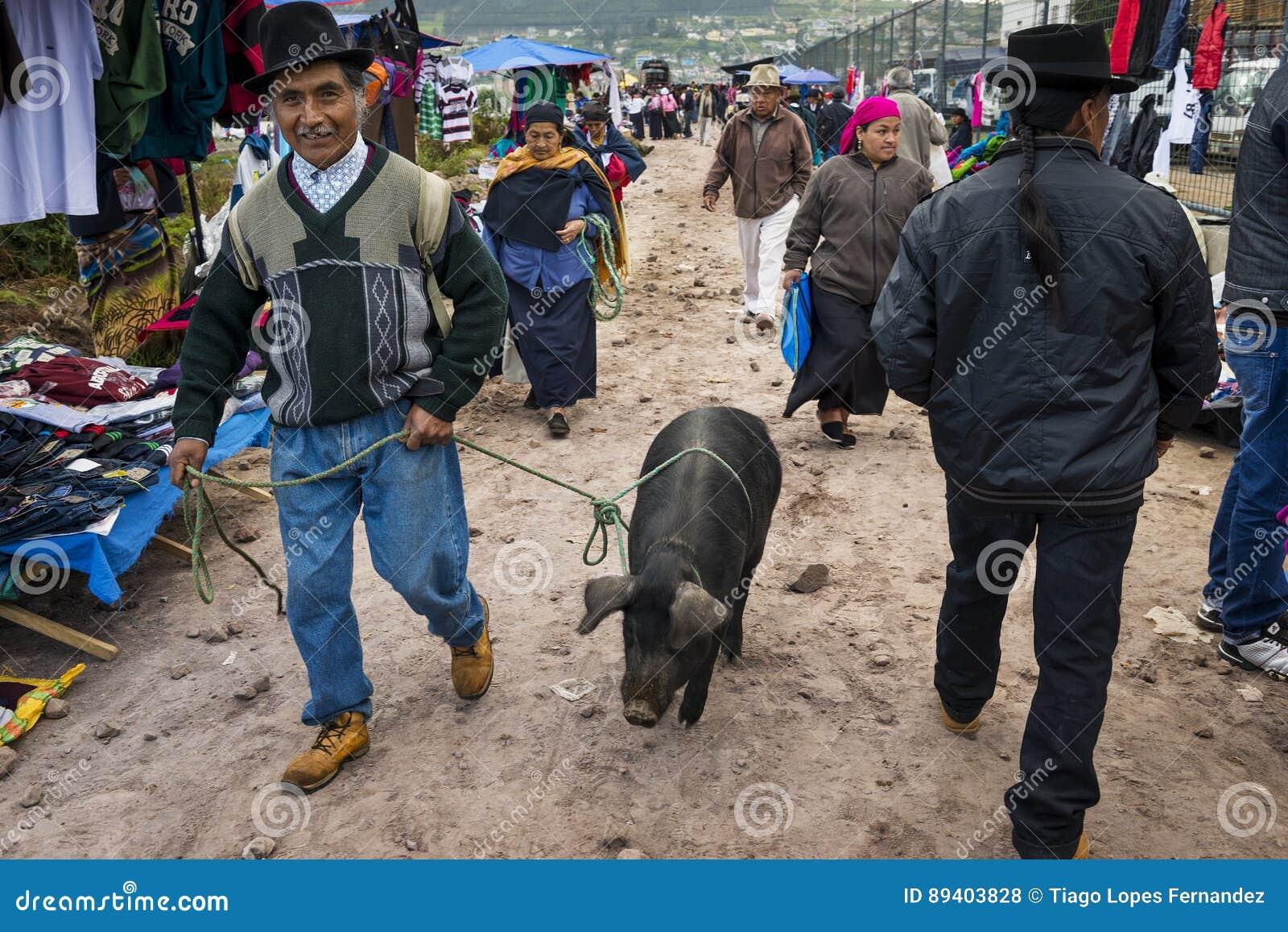 Mens met een varken bij de veemarkt van de stad van Otavalo in Ecuador