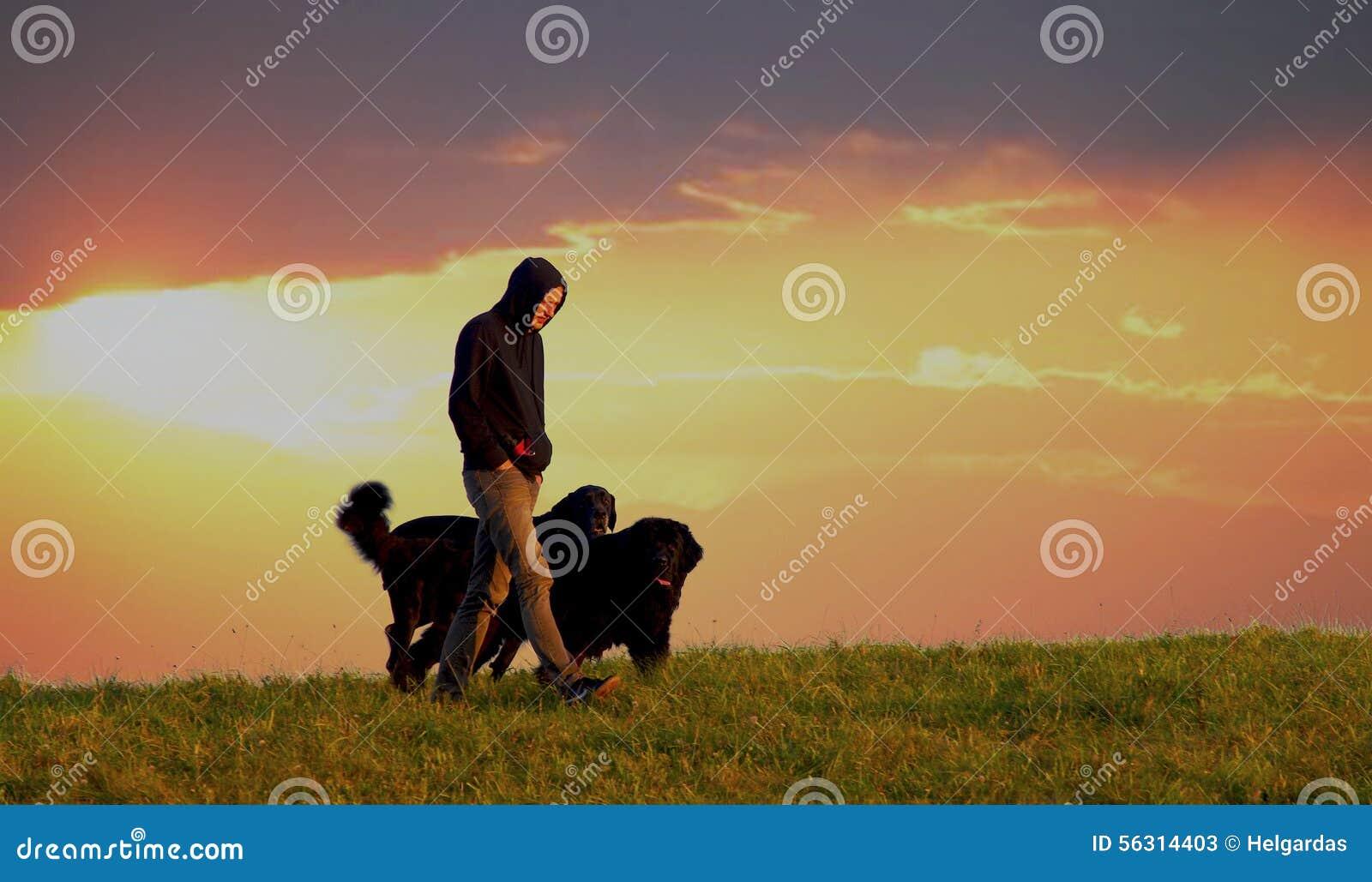 Mens met honden