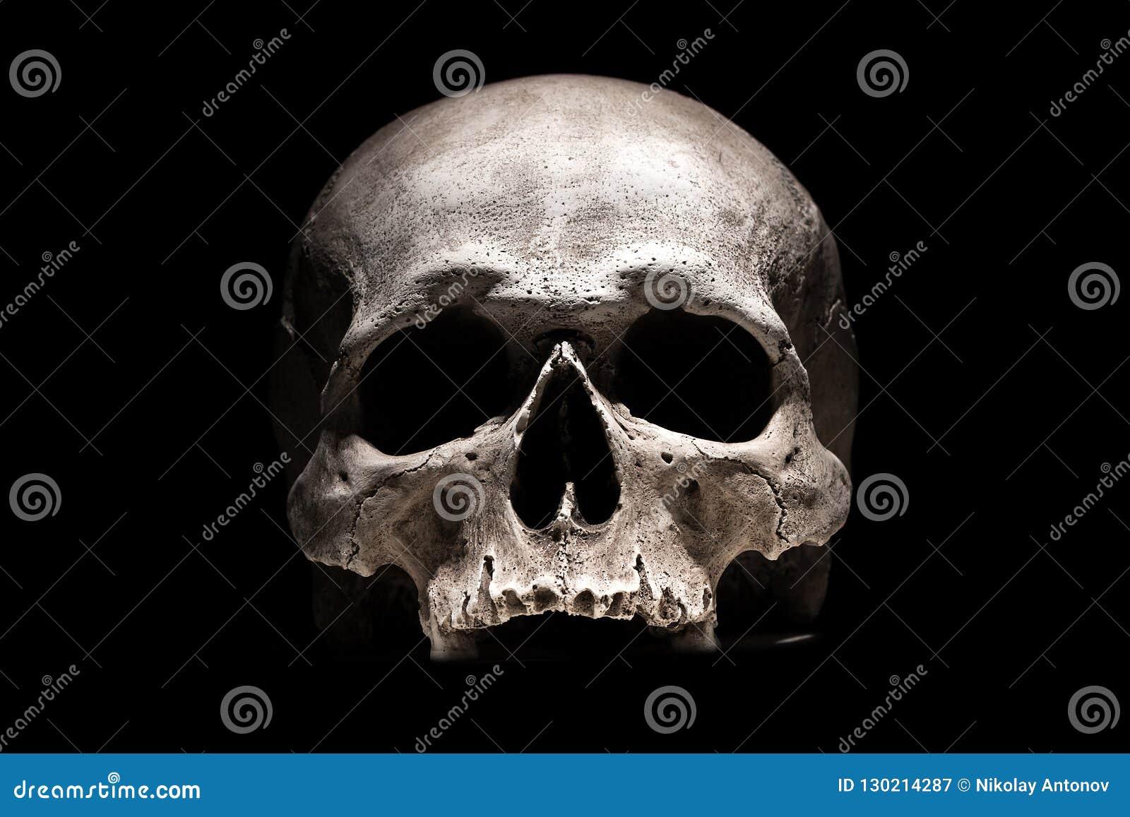 Menschlicher Schädel auf schwarzem Hintergrundabschluß oben
