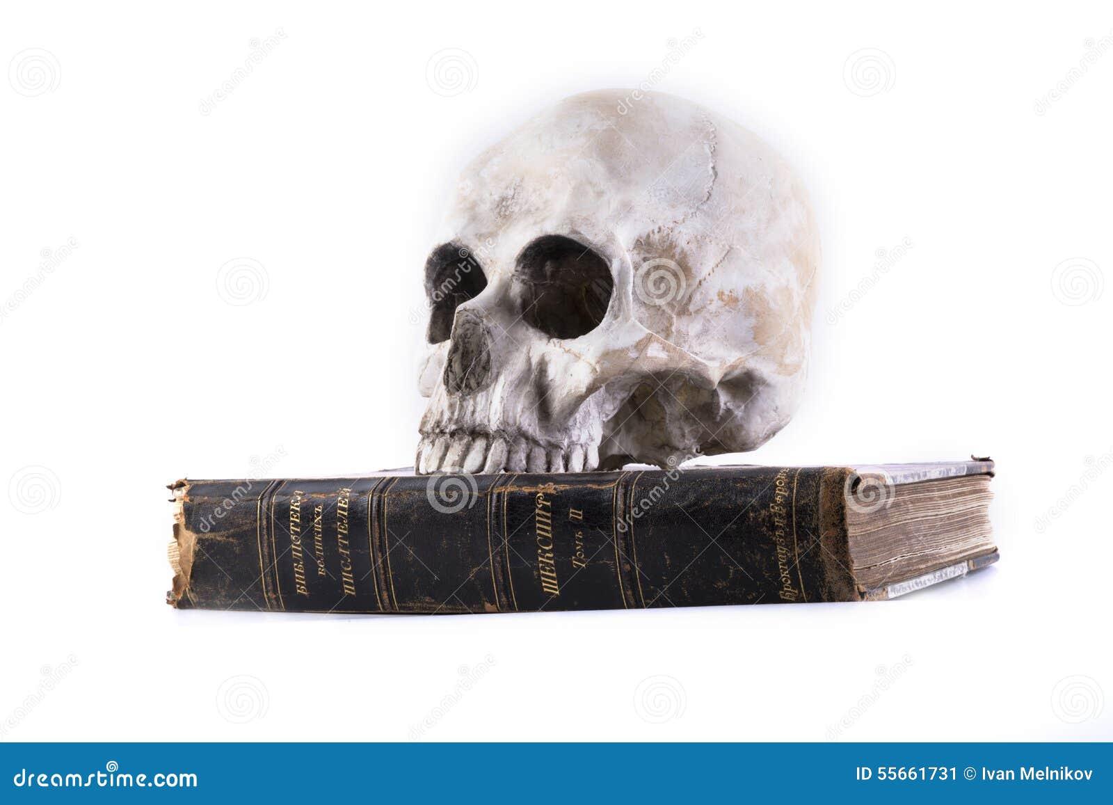 Menschlicher Schädel Und Das Buch Lokalisiert Stockbild - Bild von ...
