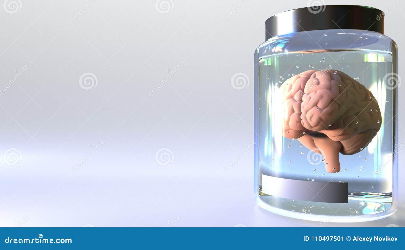 Menschliches Gehirn In Einem Glas Stock Video - Video von zerebral ...