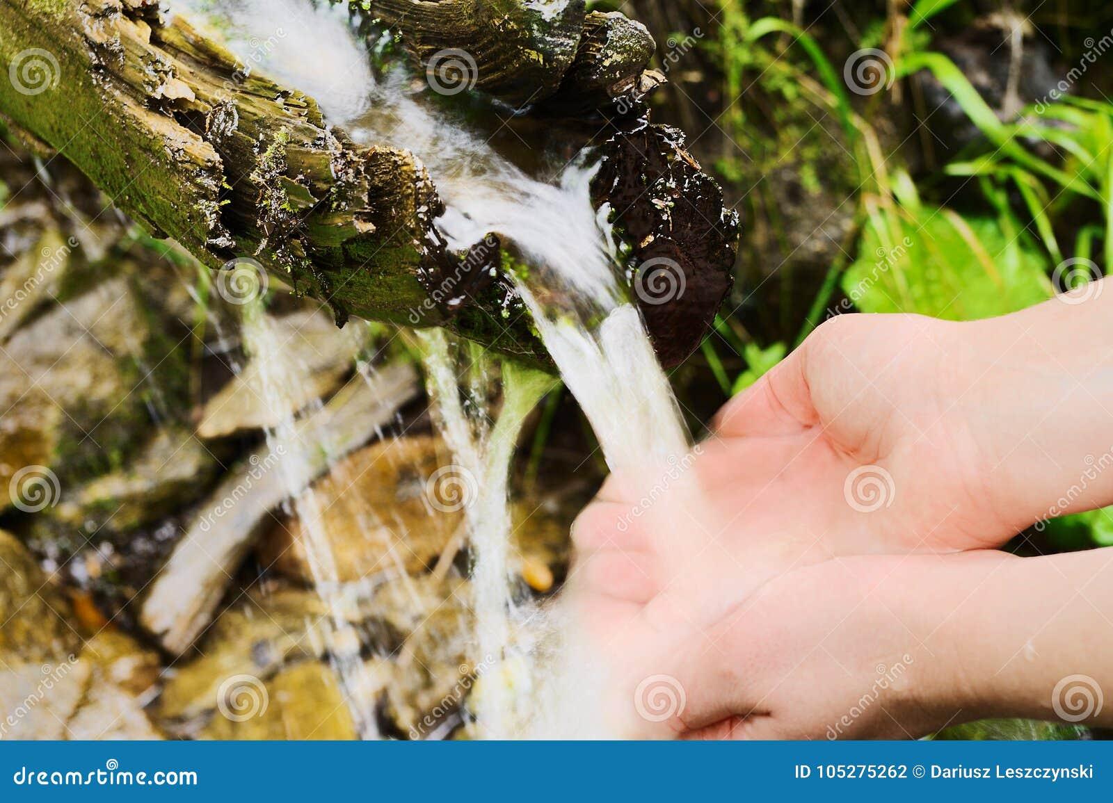 Menschliches Handnehmen rein, frisches, Trinkwasser von der natürlichen Quelle