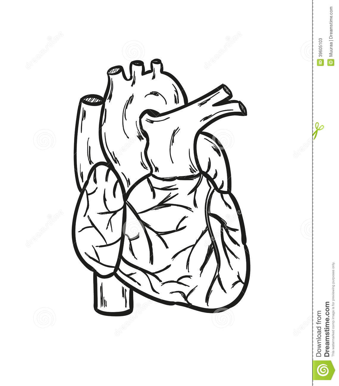 Holiday Coloring Pages Human Heart Coloring Page Free