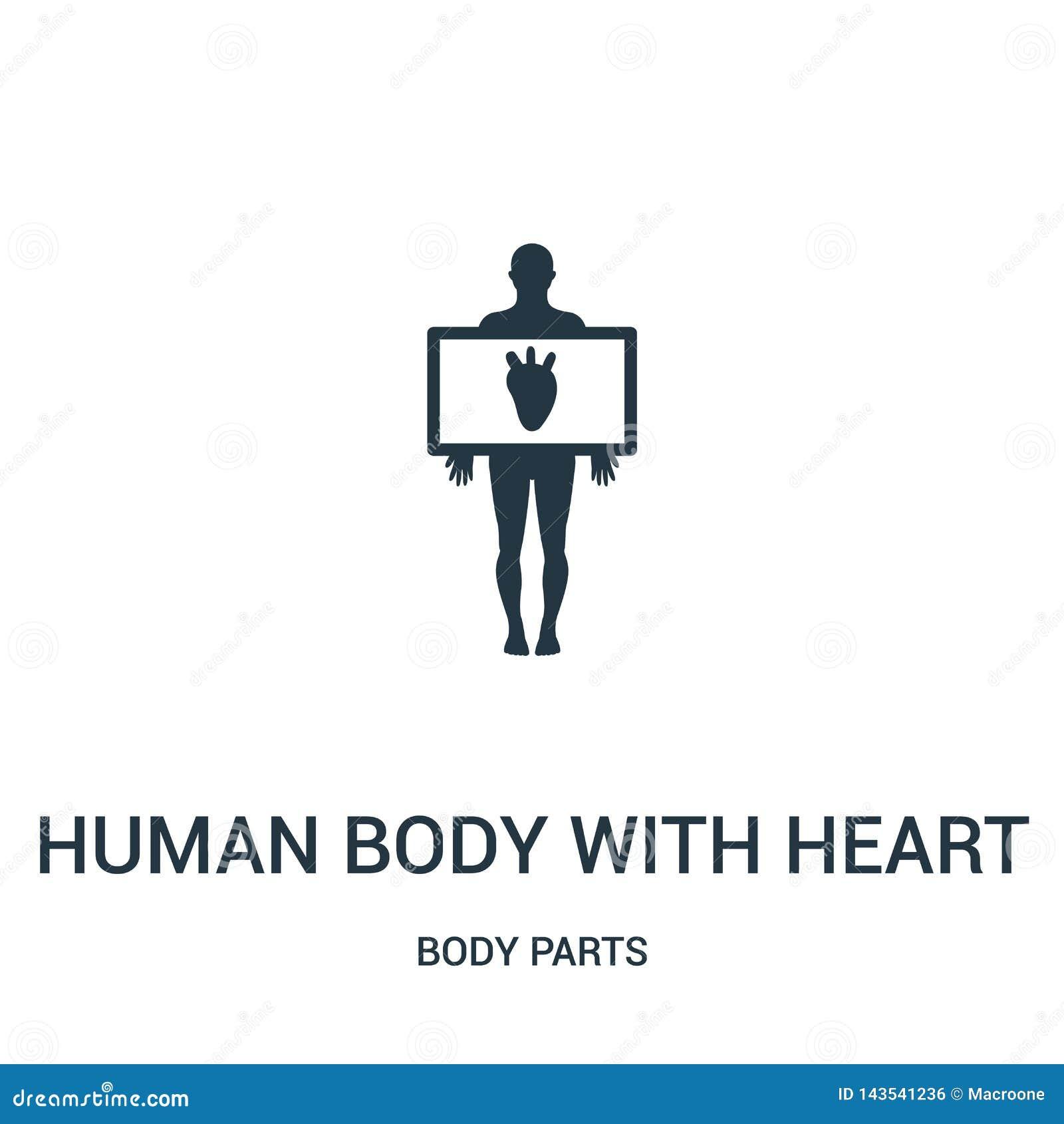 Menselijk lichaam met het pictogramvector van het hartsilhouet van lichaamsdeleninzameling Dun lijn menselijk lichaam met het ove