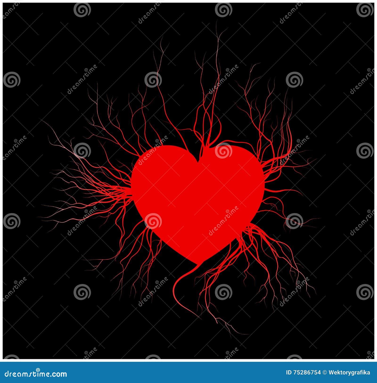 Menselijke aders met hart, rood de valentijnskaartontwerp van het liefdebloedvat Vector illustratie op witte achtergrond