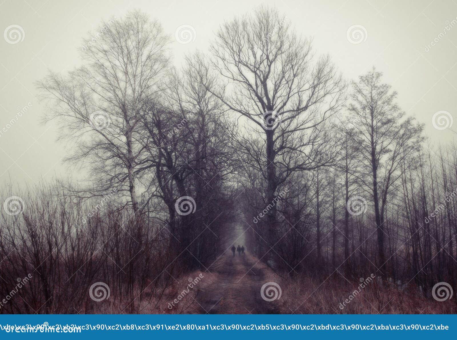 Mensen die aan mystic bos lopen