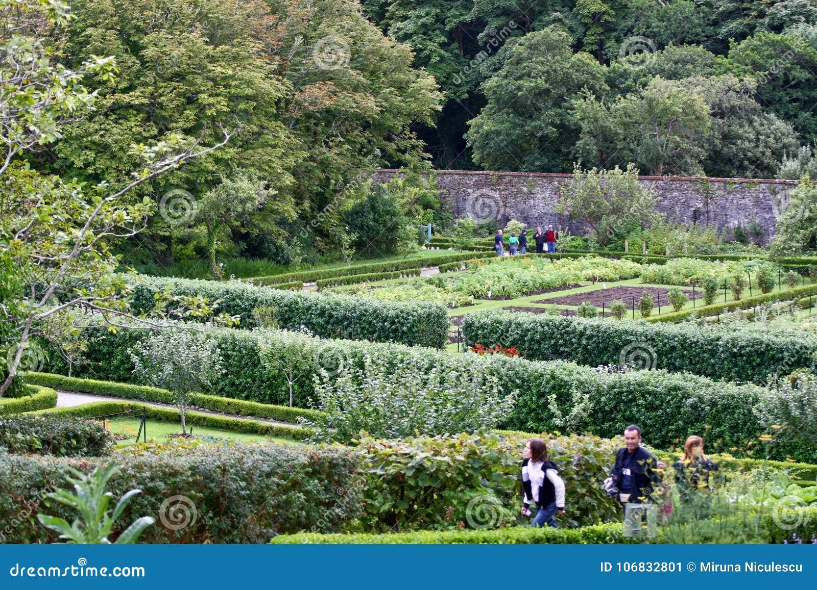 Mensen die rond Victoriaanse ommuurde tuin, Kylemore, Ierland lopen