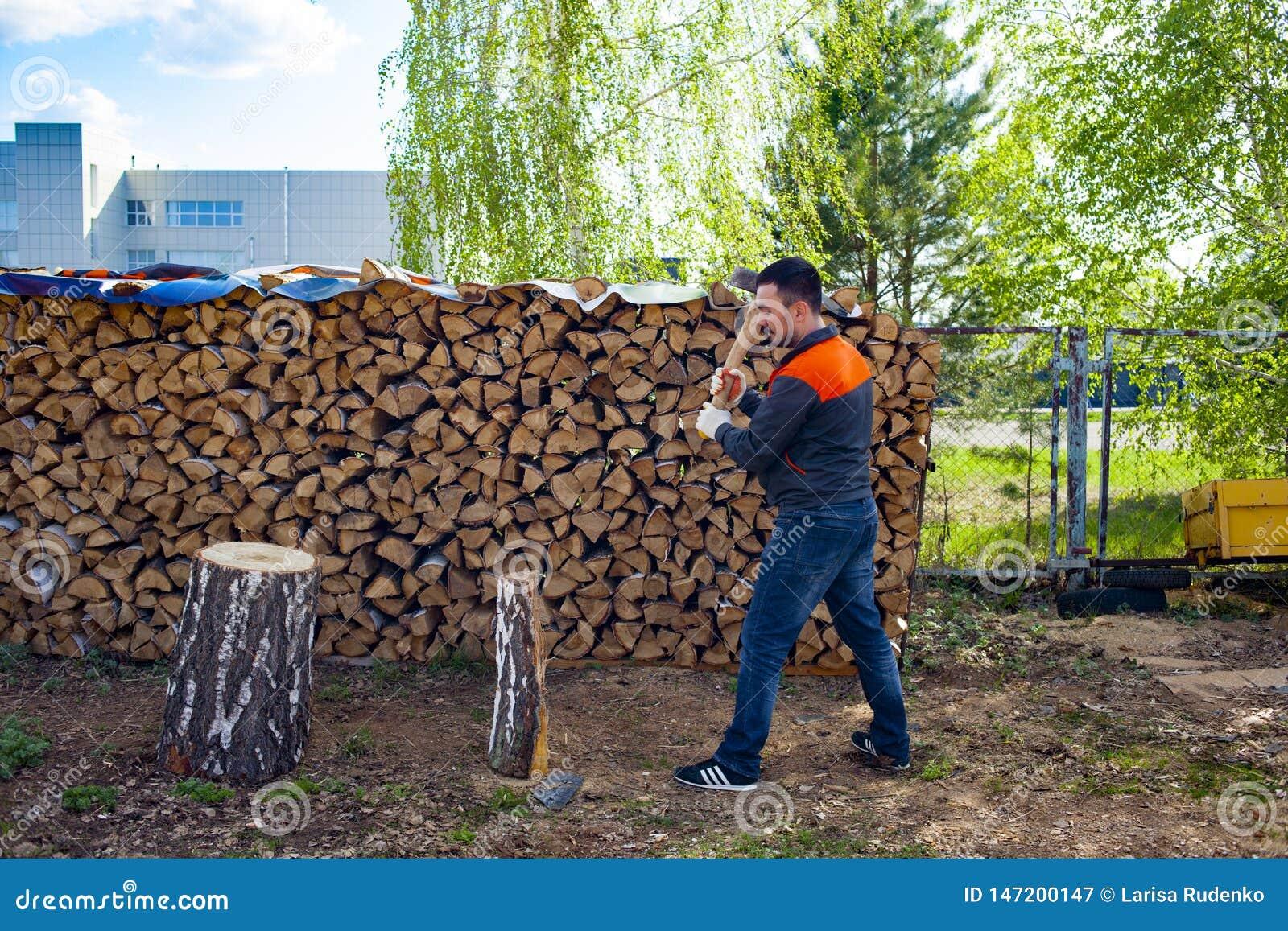 Mensen hakkend hout met een mes Het oogsten daling voor de winter in Rusland Berkbrandhout