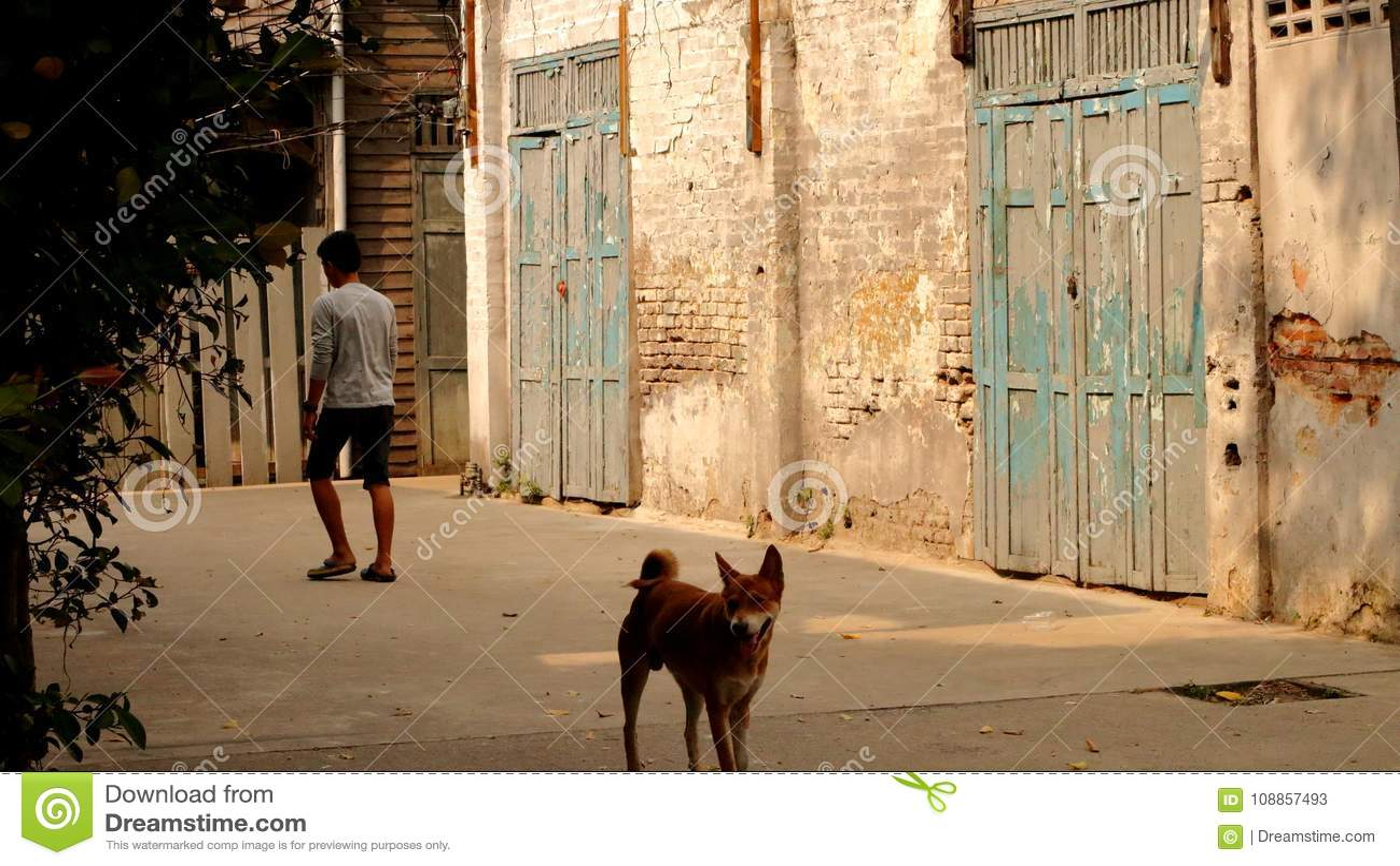 Mensen met hondengang in de oude bakstenen muurgemeenschap