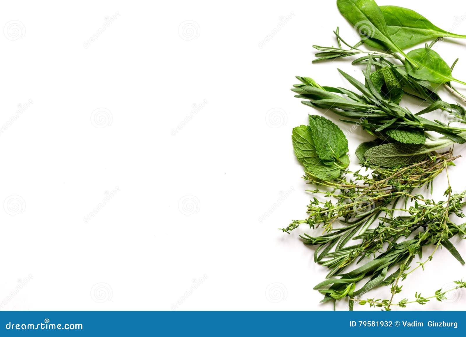 Menta, sabio, romero, tomillo - fondo del blanco del aromatherapy