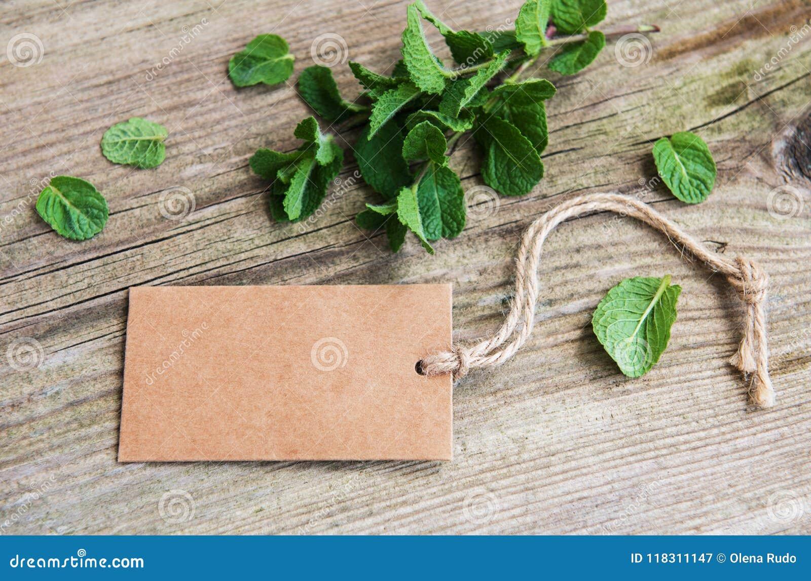 Menthe verte avec la vieille étiquette de papier