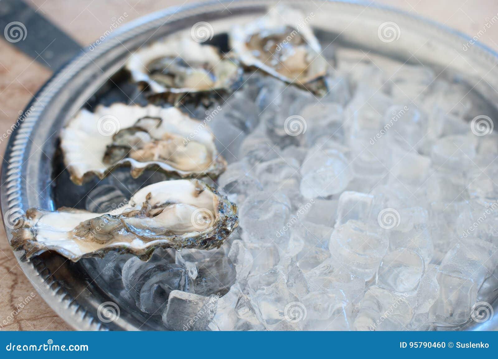Mentira fresca das ostras em uma bandeja de gelo