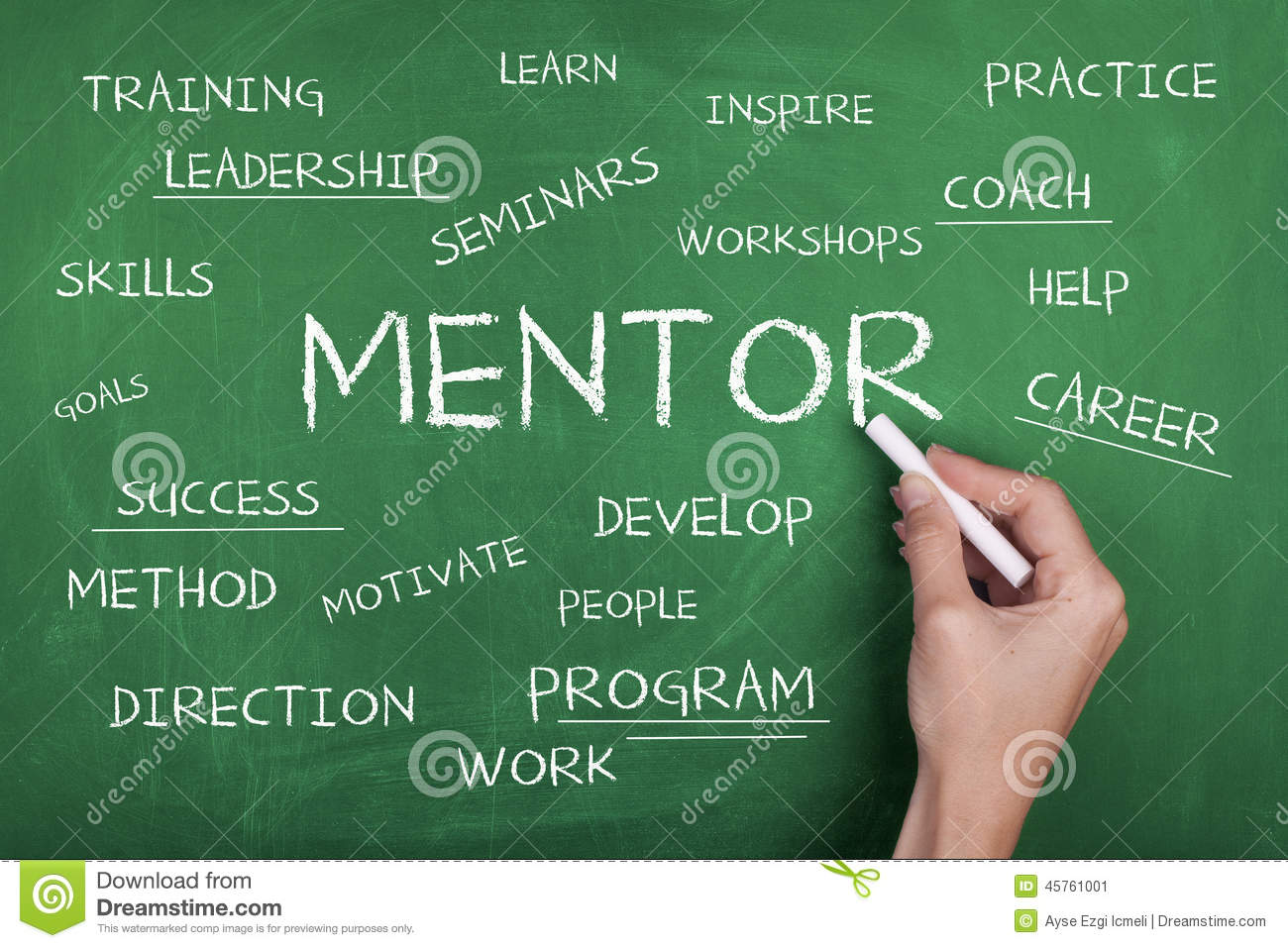 a searchlight on mentoring and coaching Because coaching and mentoring are powerful components of developing future leaders with mentoring and coaching developing future leaders with mentoring and.