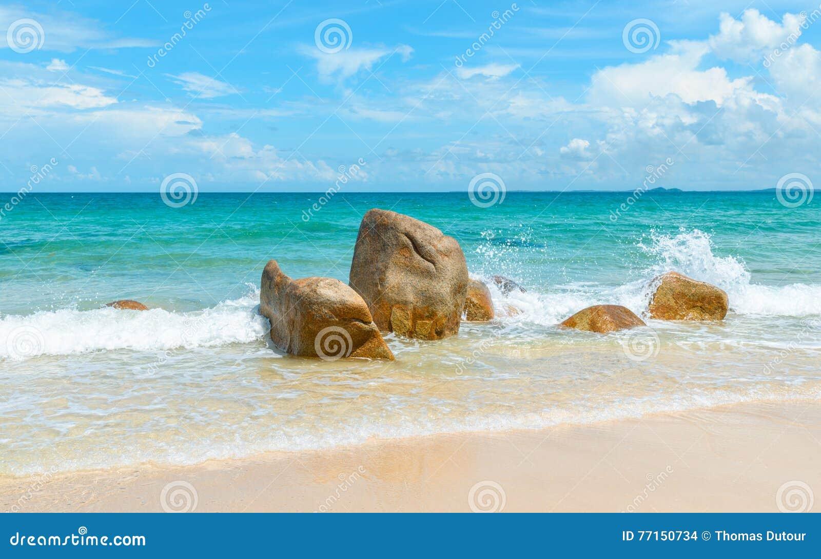 Mer azurée claire se brisant sur des roches