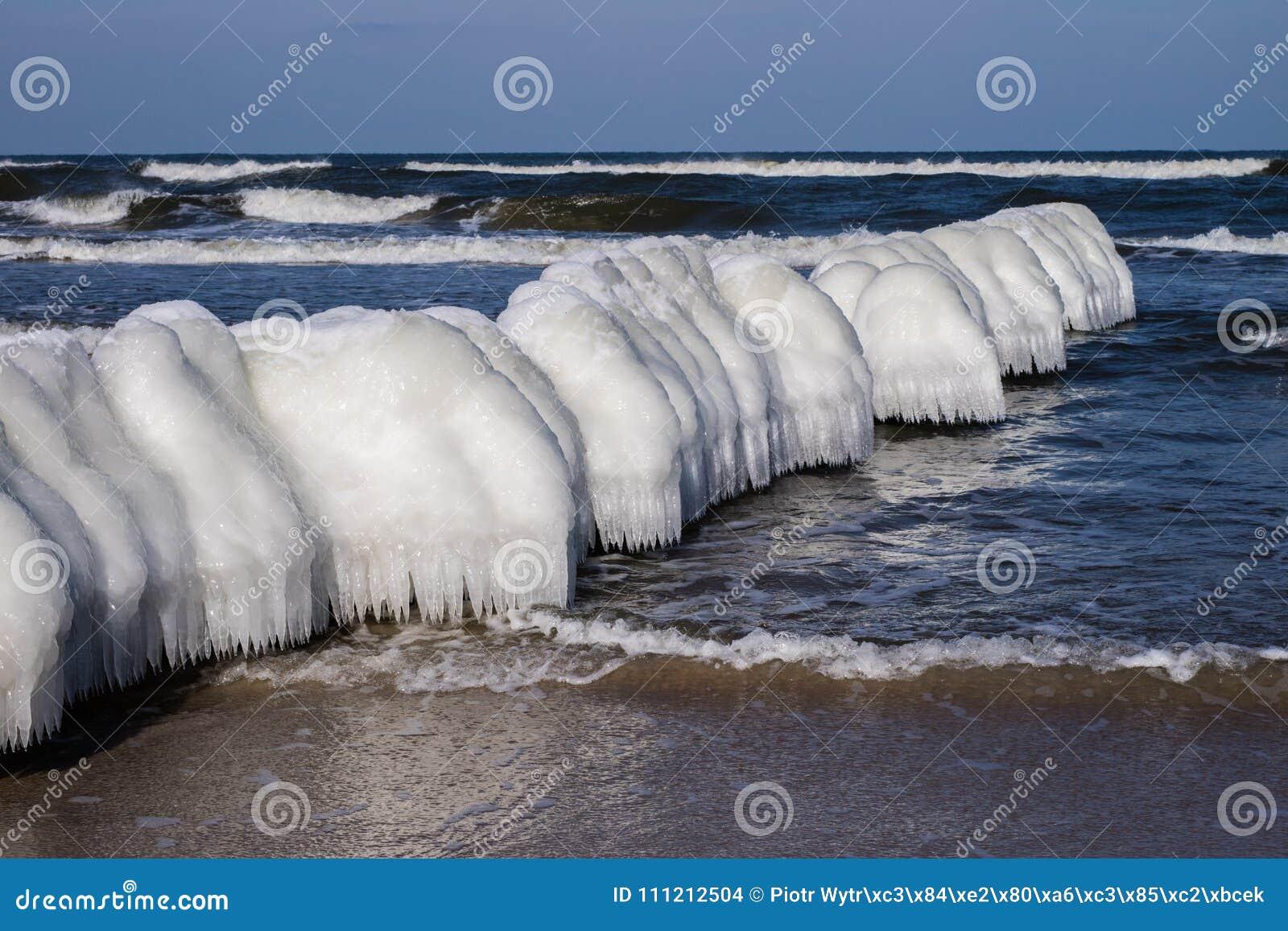Mer baltique en Pologne Bord de mer et falachron avec du pe en bois glacial
