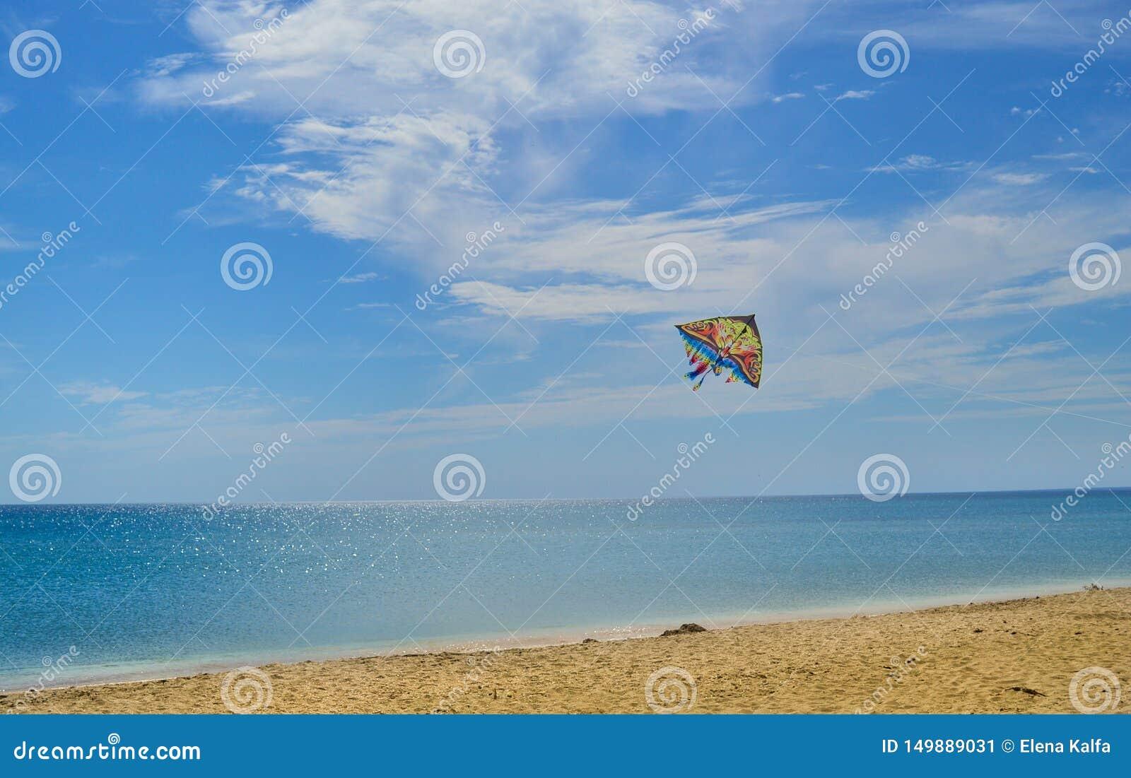 Mer bleue et plage sablonneuse un jour ensoleillé et cerf-volant dans le ciel