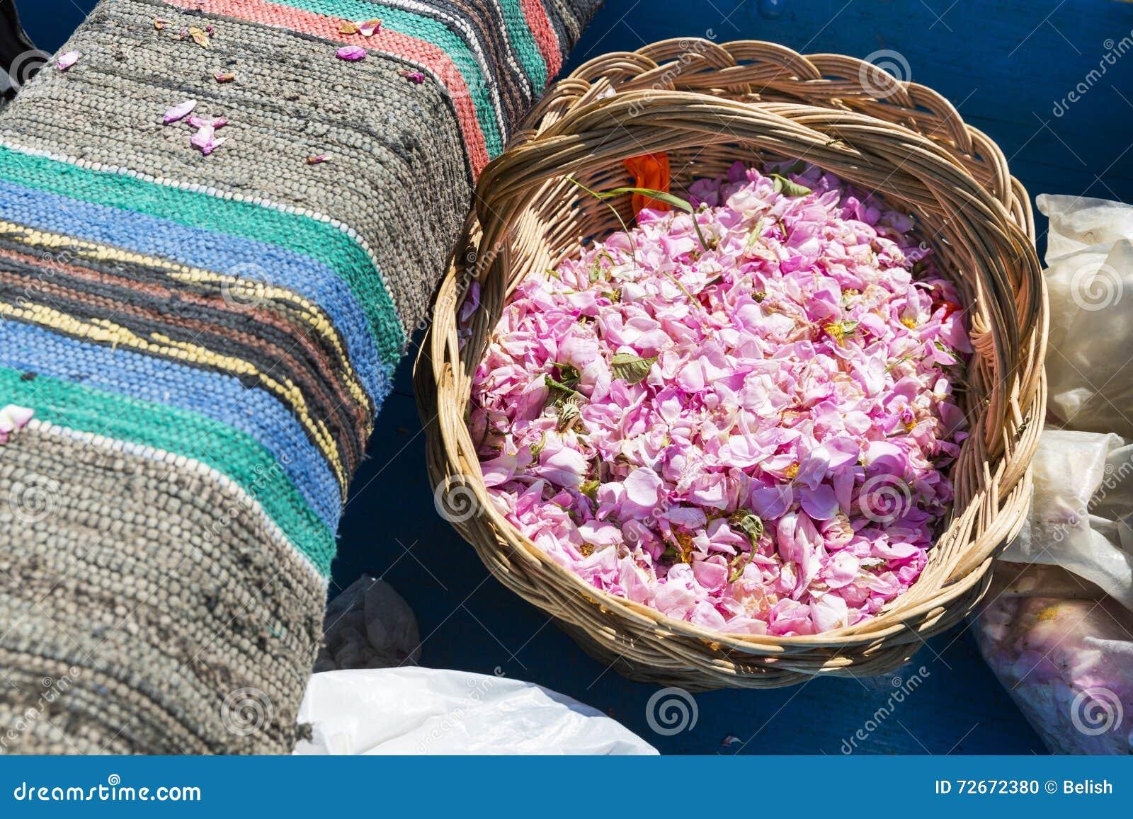 Merce nel carrello del fiore della rosa di rosa