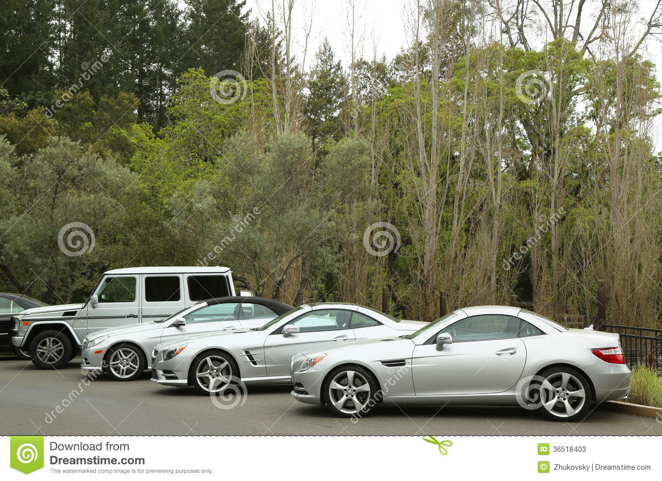 Mercedes benz cars presented as part of the mercedes benz for Mercedes benz program