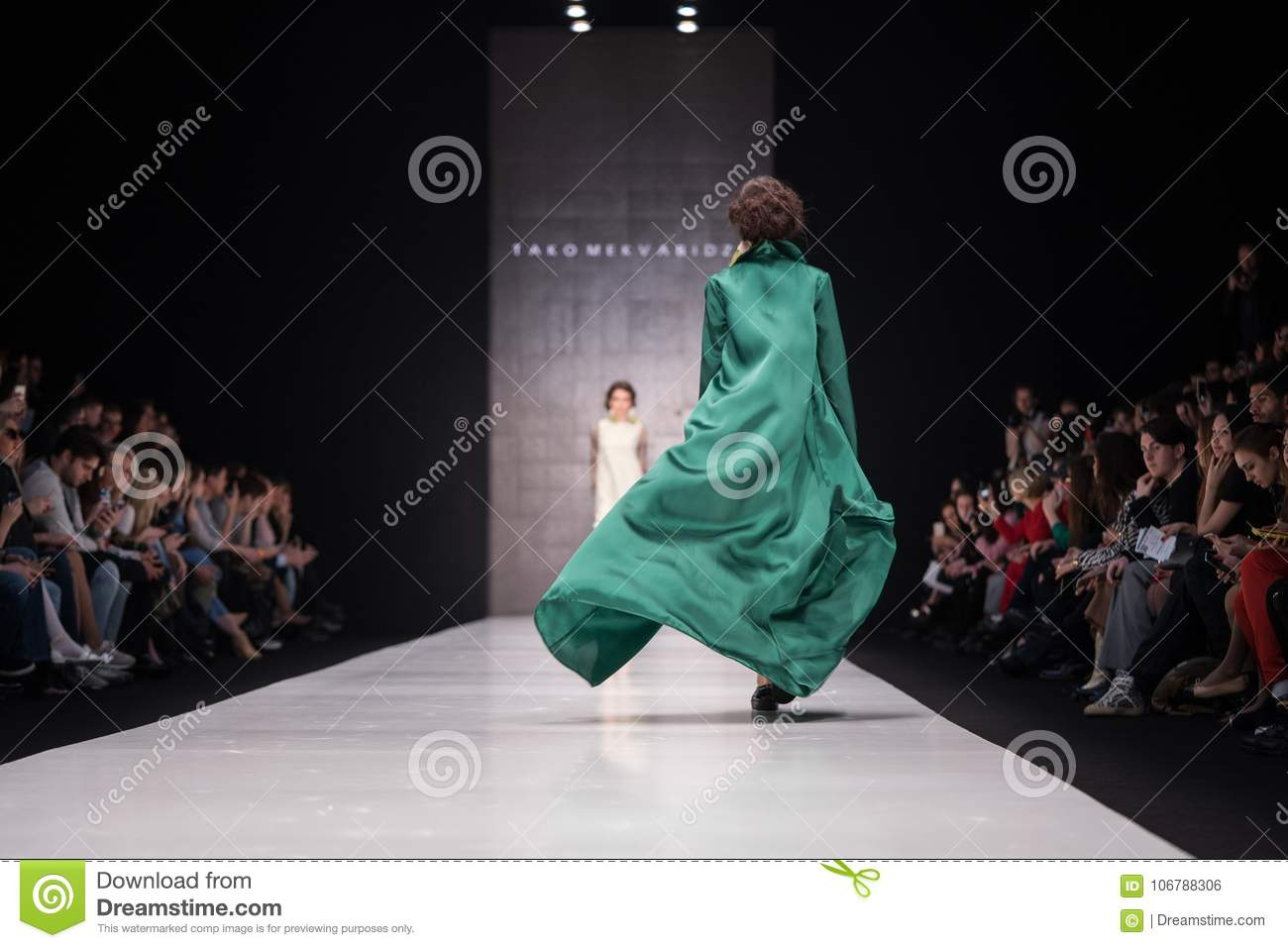 Mercedes Benz Fashion Week Russia 2017 Editorial Photo Image Of Dress Designer 106788306