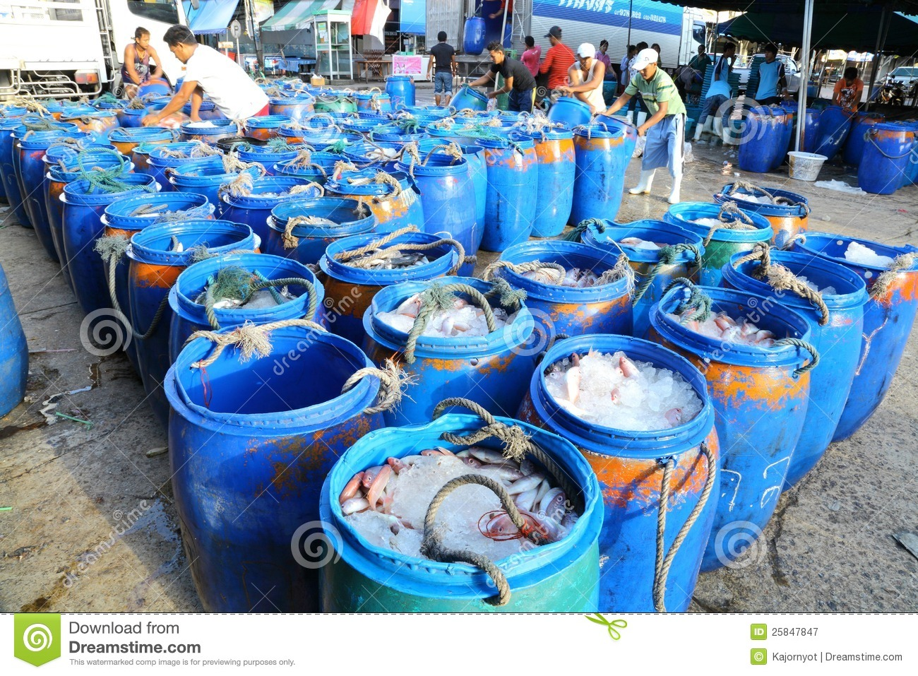 The merchants arrange the bucket which plenty of f for Browse plenty of fish