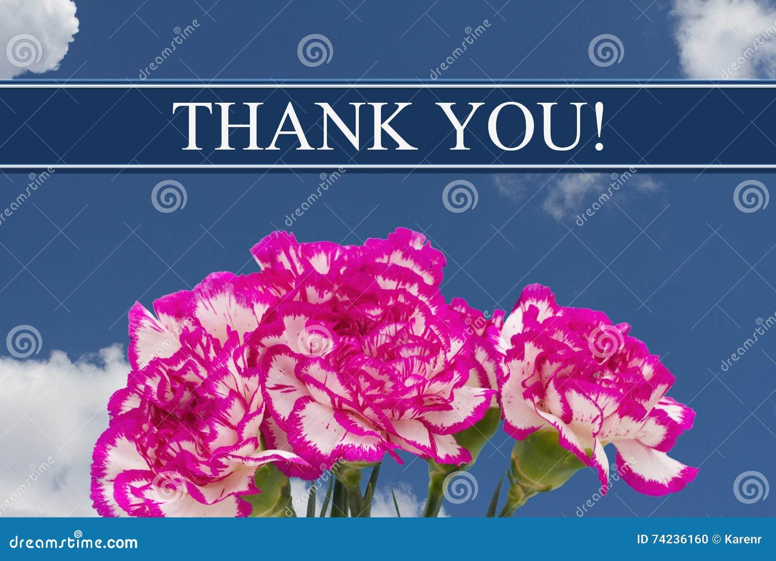 Merci message avec un bouquet rose et blanc de pivoine