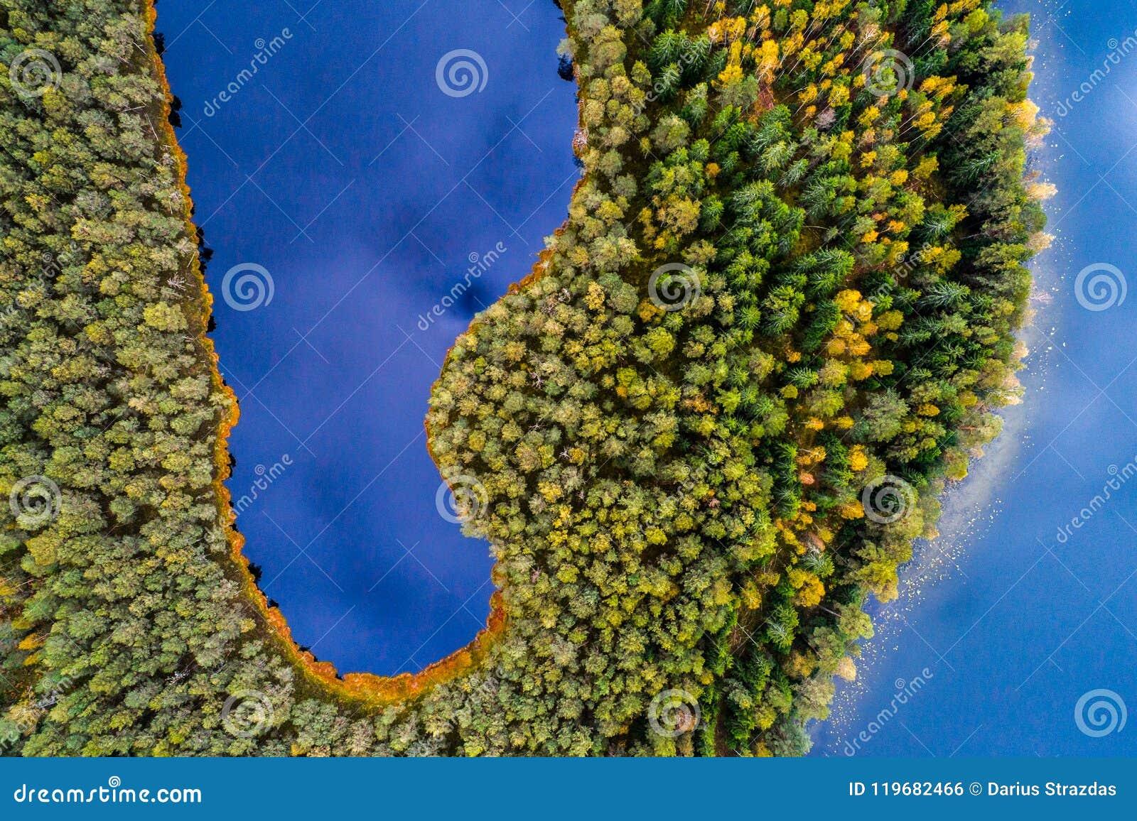 Meren in bos, hoogste mening