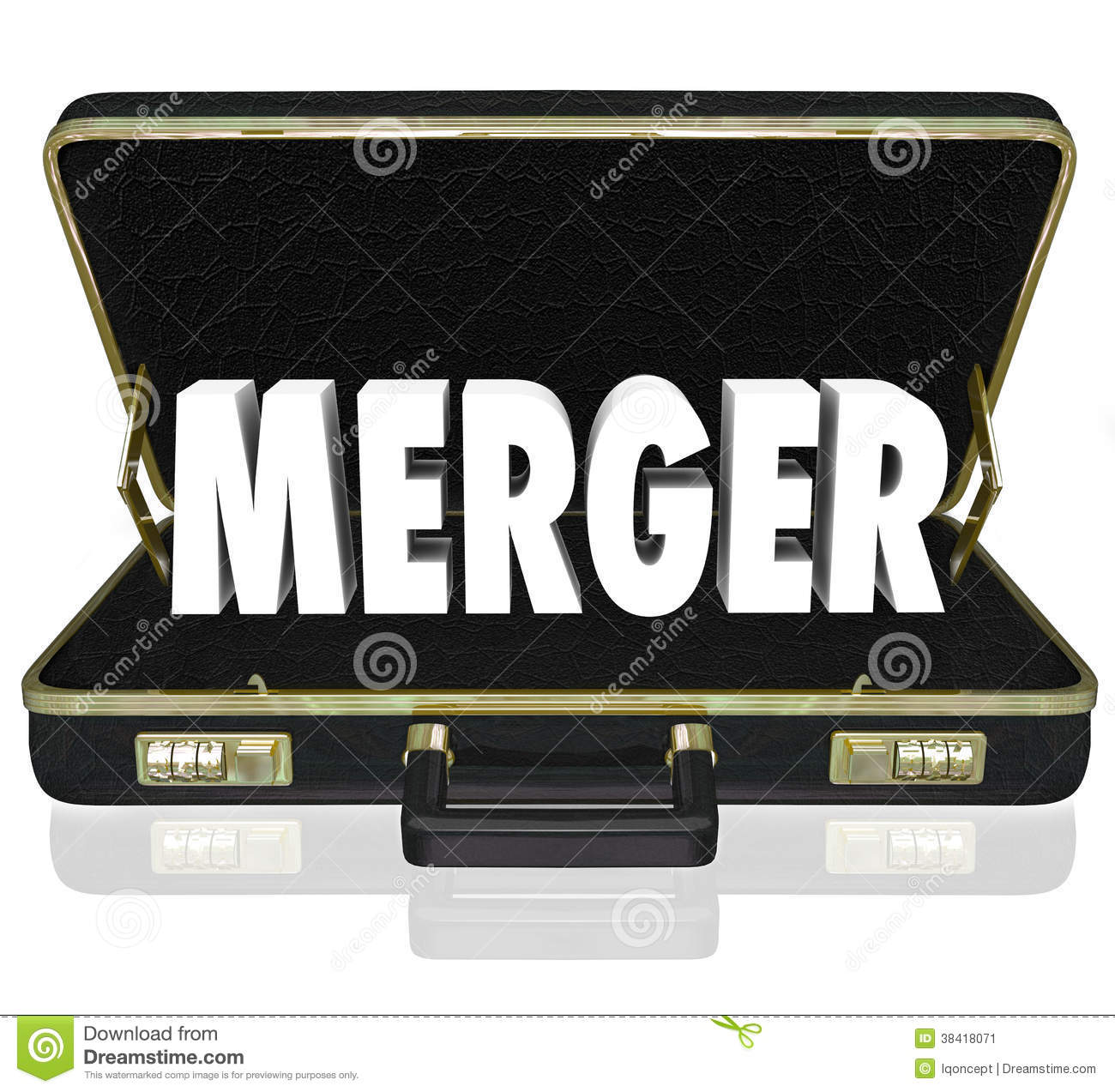 how to write a merger proposal