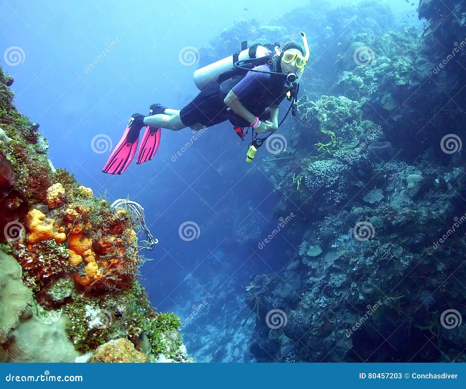 Mergulhador de mergulhador fêmea