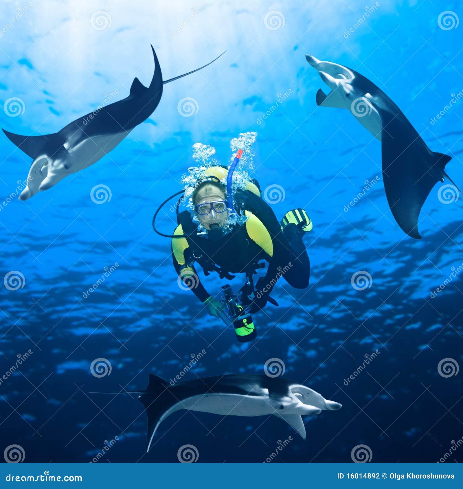 Mergulhador e Manta